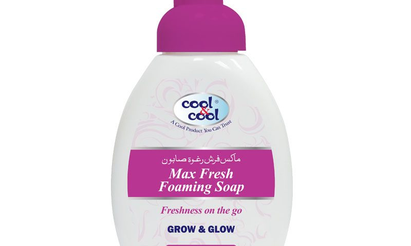 Max Fresh Foaming Soap